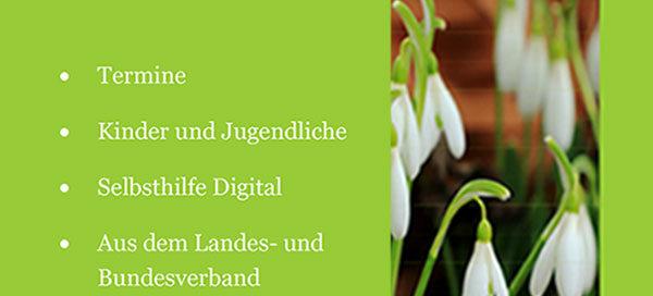 APK Rastatt | Newsletter 02-2020